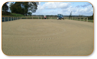 Equestrian Surfaces 0007.JPG