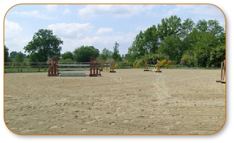 Equestrian Surfaces 0003.JPG