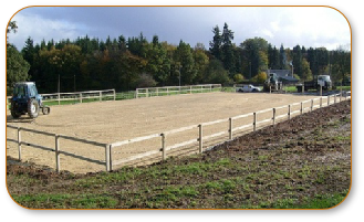 Equestrian Surfaces 0008.JPG