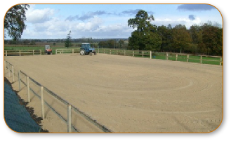 Equestrian Surfaces 0005.JPG